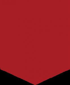 polygon_down